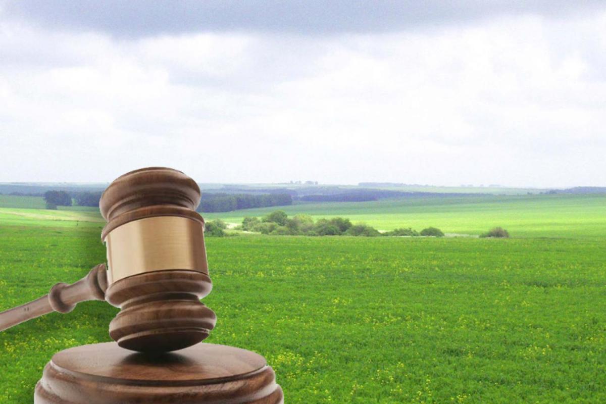 Установка заборов в частном секторе: какие споры возникают и варианты их решения. Адвокат в Запорожье. Юридическое бюро Линия права