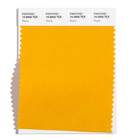Жълтият цвят с оранжеви оттенъци Daylily е сред 10-те най-модерни за сезон есен зима 2021/2022 според Пантон.