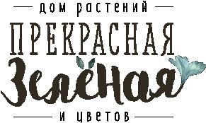 Прекрасная зеленая - цветочная лавка в Санкт-Петербурге. Авторские букеты, композиции в лесном стиле