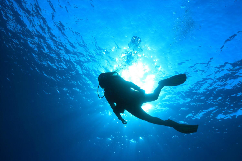 картинка аквалангист в море шелухи