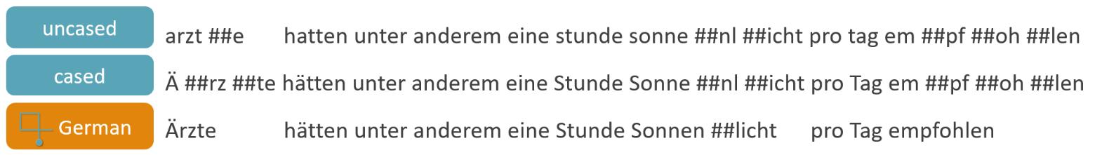 deepset - open sourcing German BERT