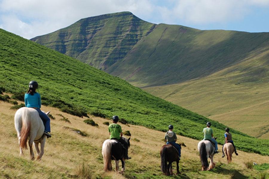 Ponies trekking in the Brecon Beacons