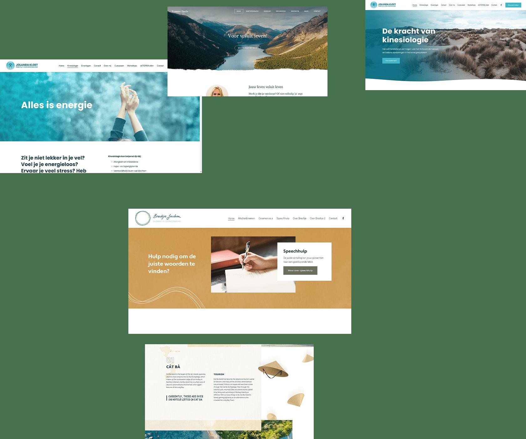 Website ontwerp meerdere projecten 1