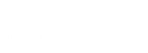 DOLPHIN EXTREME CLUB