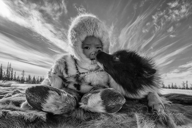The boy and the dog in Yamal