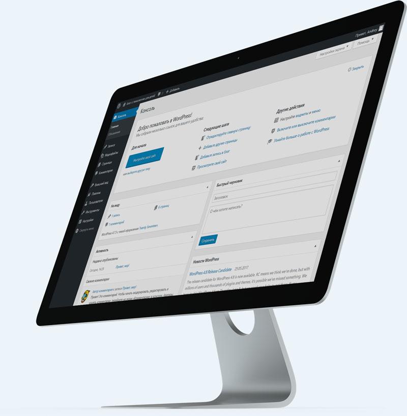 Бесплатный онлайн-тренинг WordPress PROFI