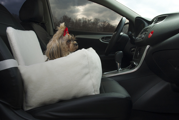 автокресла, переноски для собак в машину