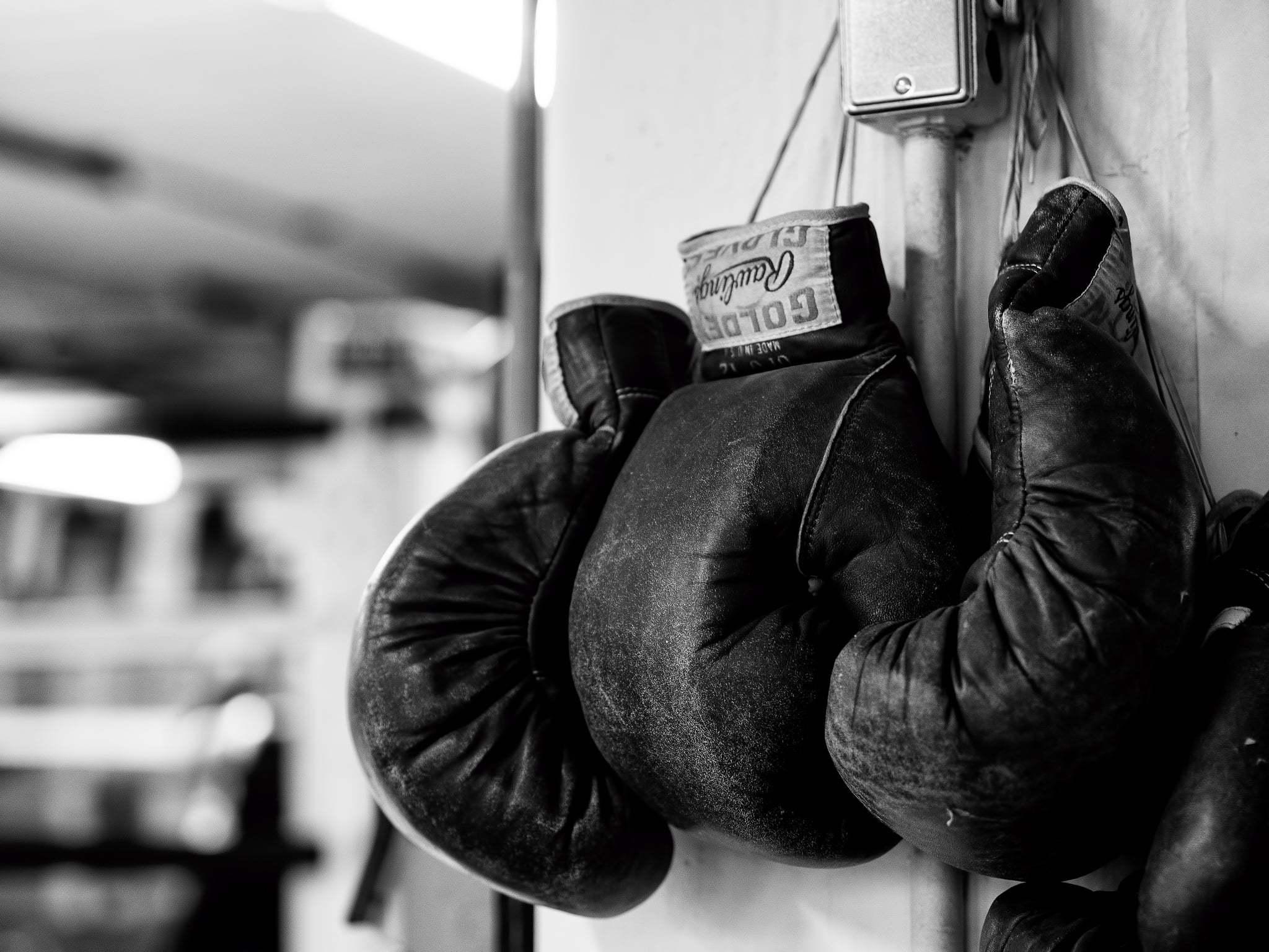 Картинки на аву боксерские