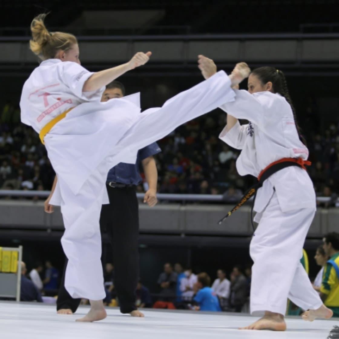kyokushin fight