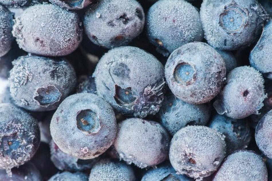Метод позволяет сохранить до 80% витамин и полезных веществ голубики