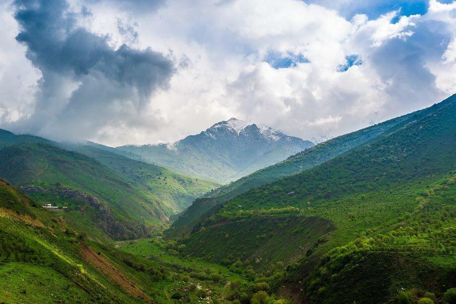 фотографии горы узбекистан высаживаются