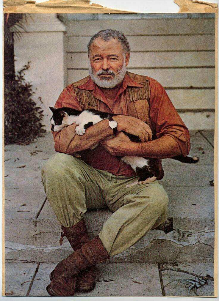 an analysis of the setting and writing style in ernest hemingways cat in the rain The complete short stories of ernest hemingway summary & study guide apparent talent in writing is in cat in the rain, out of season, in another.