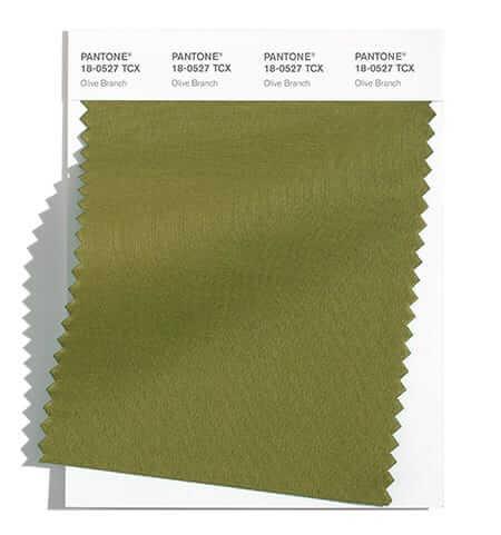 Olive Branch е един от класическите цветове за есен зима 2021/2022 според Pantone