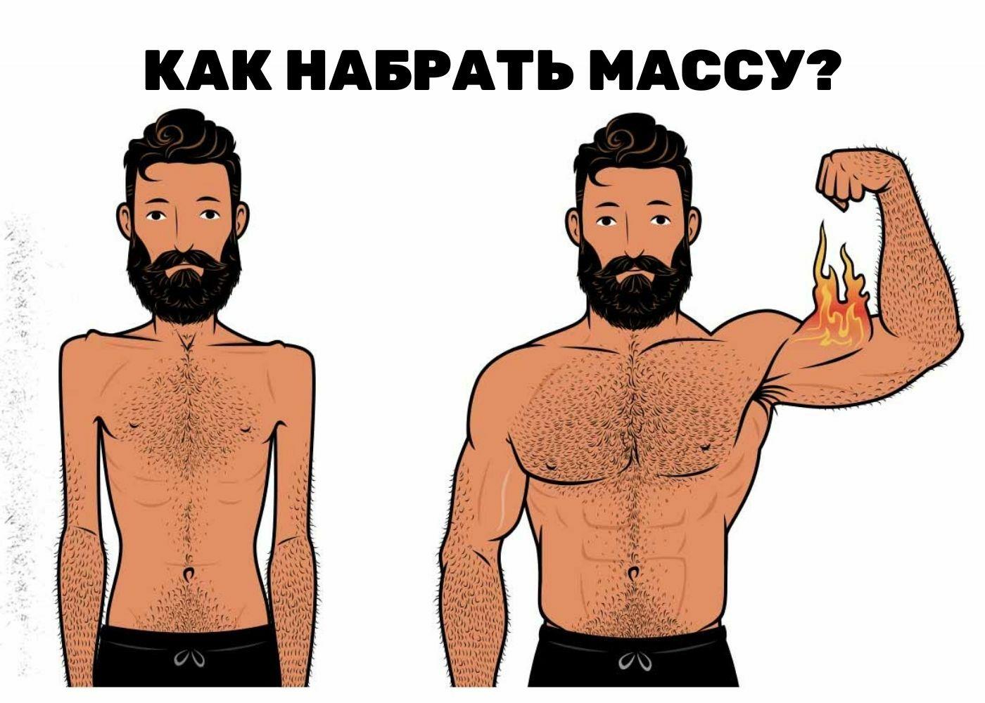 Как набрать мышечную массу?