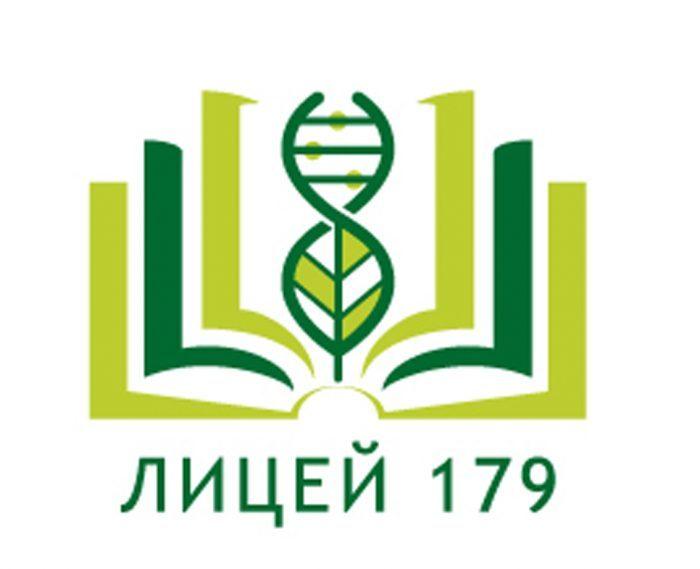 Информатизация в лицее №179