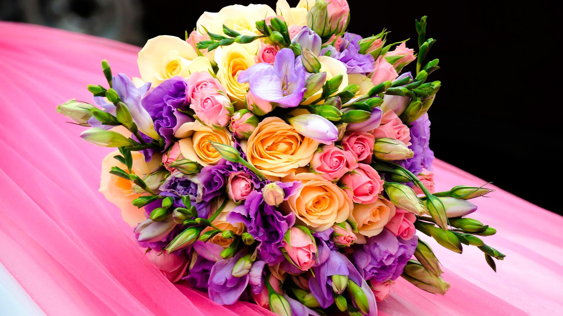 не ядовитые комнатные цветы фото с названиями и уход за ними