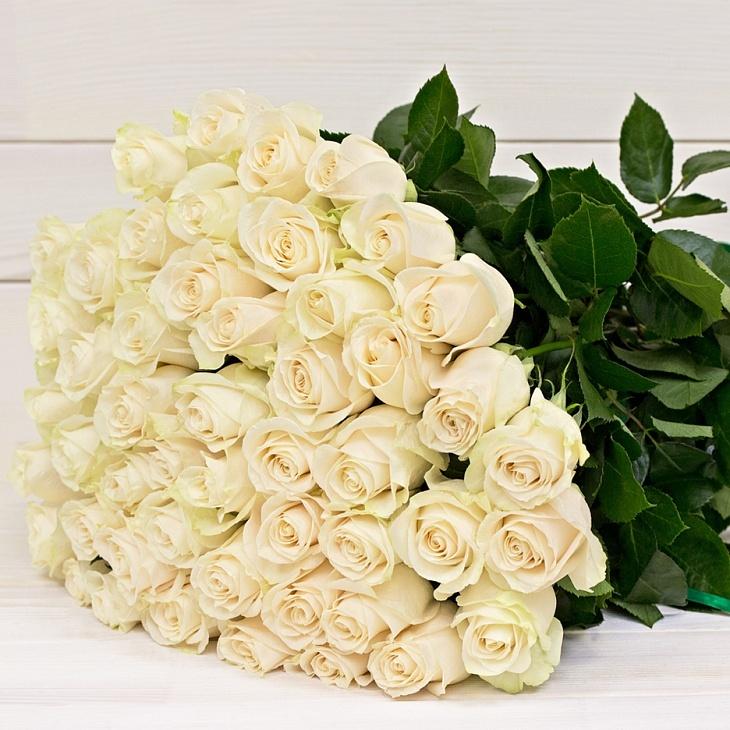 Картинки белые розы огромные букеты
