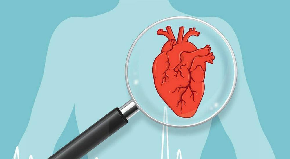 Защити свое сердце