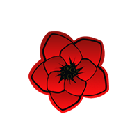 База цветов 24