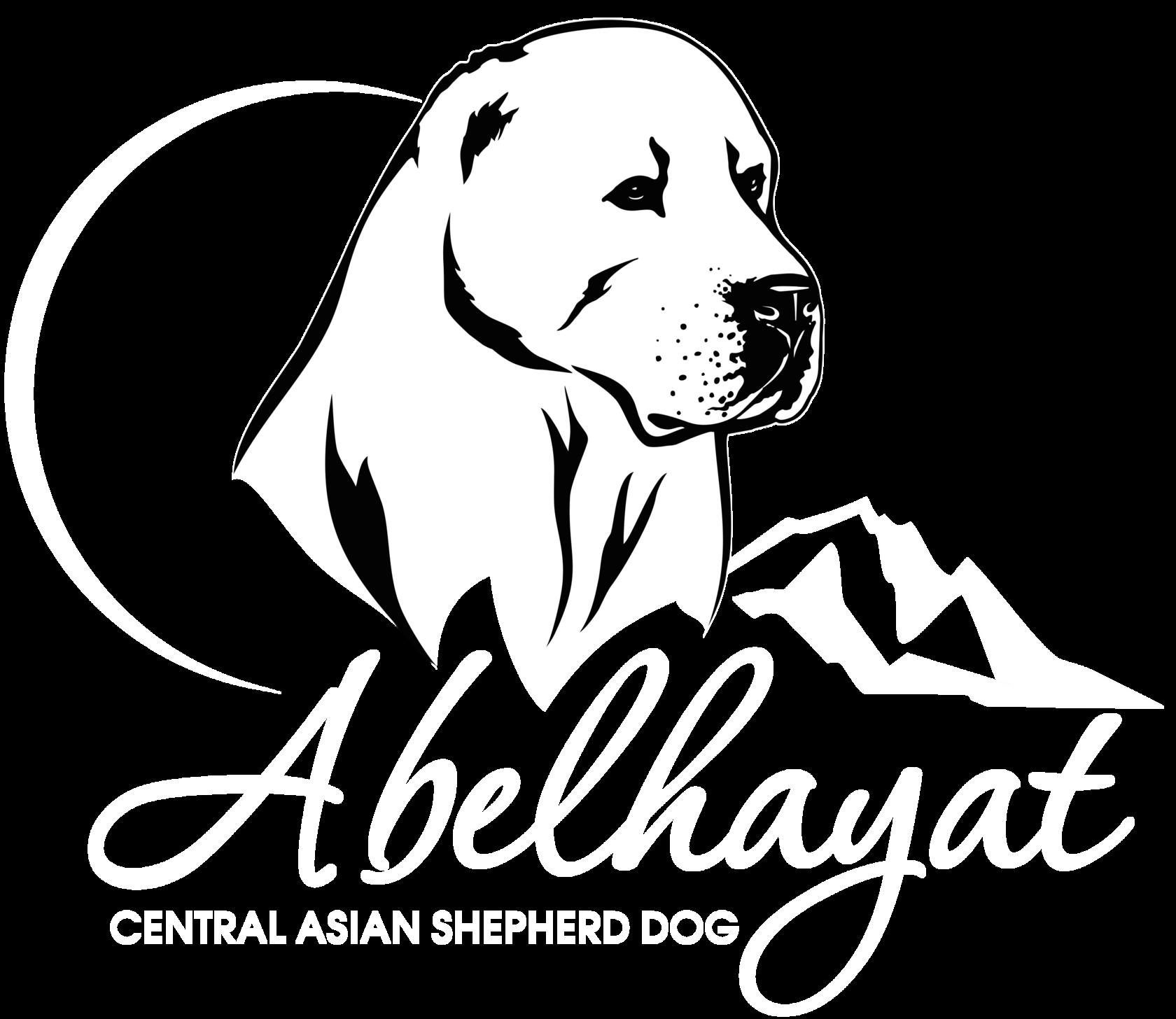 Абельхаят