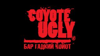бар Гадкий Койот Ugly coyote
