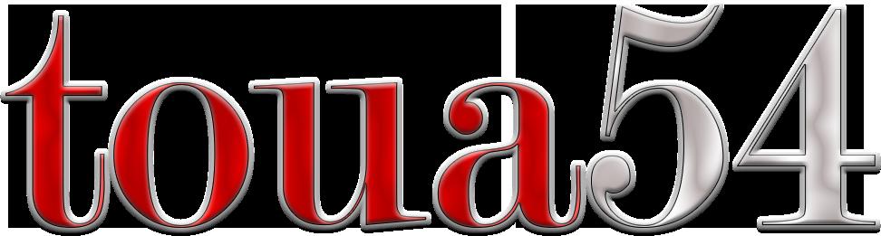 TOUA54.RU