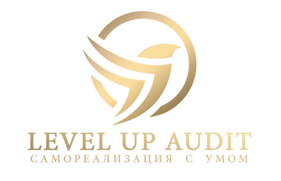 Агентство Level Up Audit  Самореализация с умом