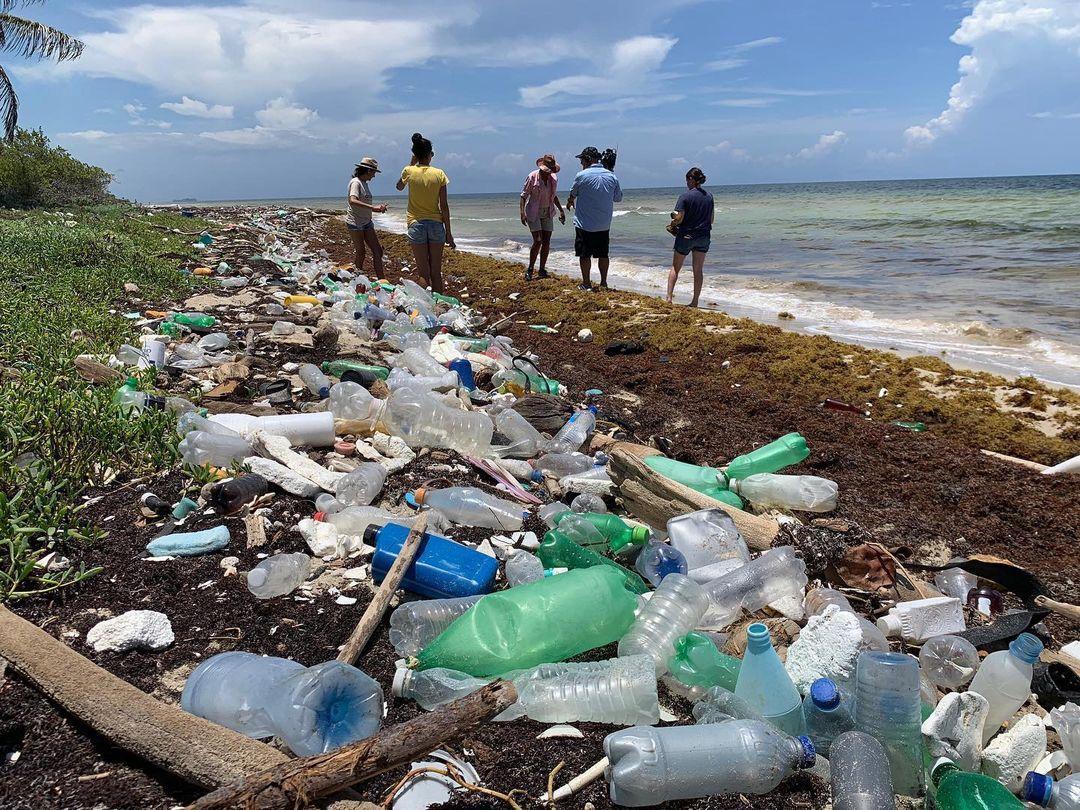 загрязнение океанов  пластиком