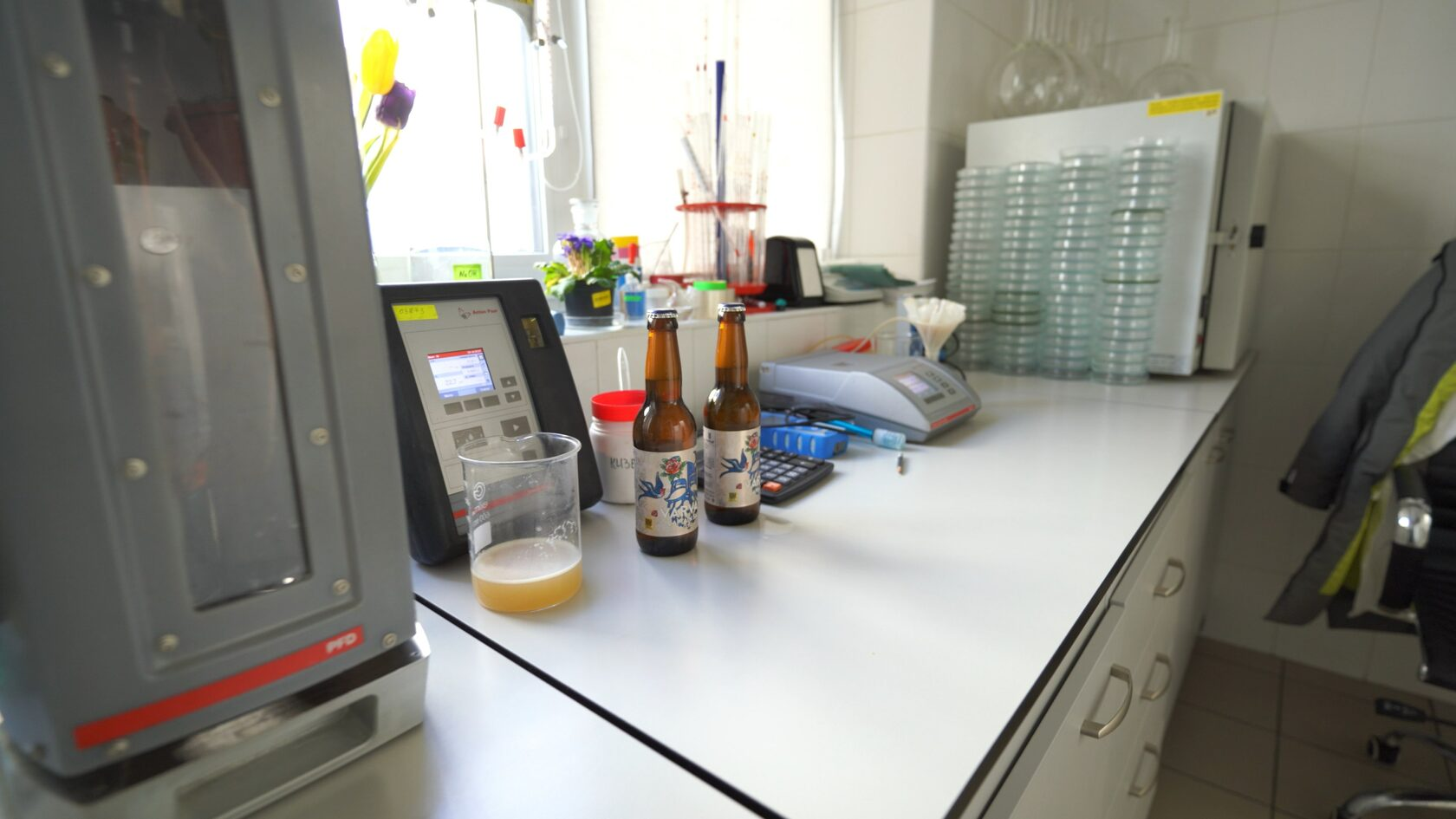 В лаборатории пивоварни Varvar
