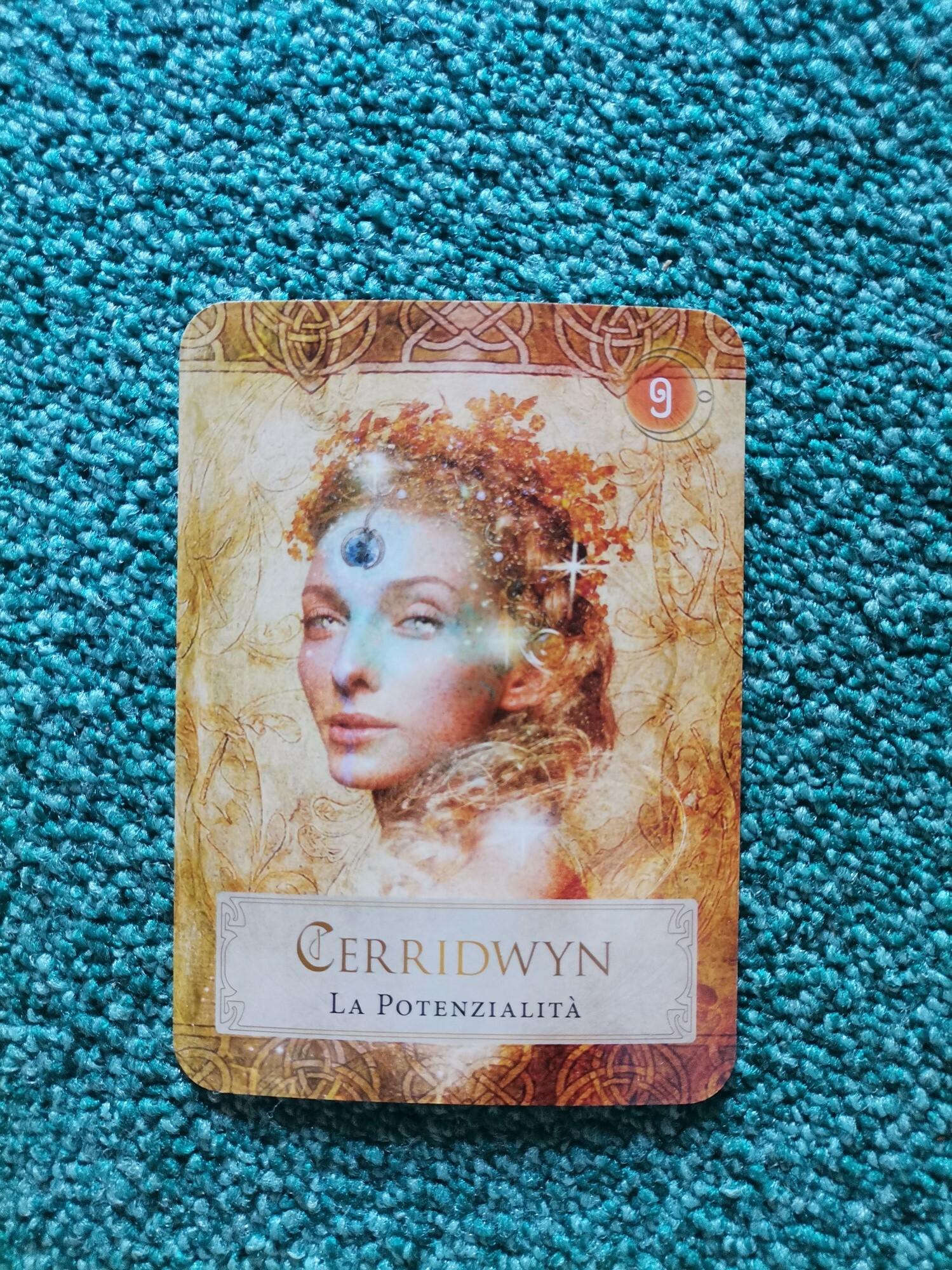 """Carta oracolare """"Medicina di Cerridwyn"""" dal mazzo """"il potere"""