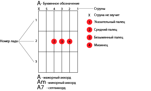 Как научиться играть на гитаре с нуля (за 14 дней)