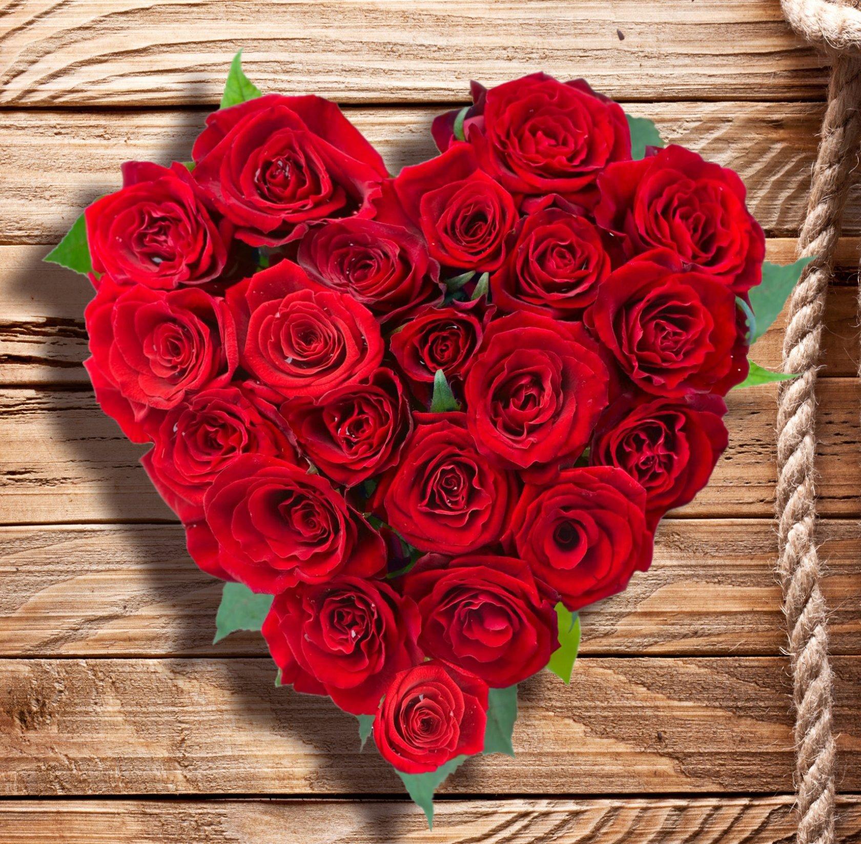 Букет, цветы розы красивые букет красные фото