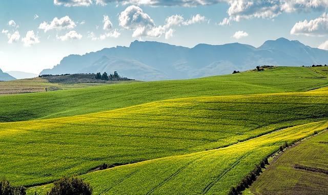 Тамбовский токен (тамбовкоин) хотят обеспечить землёй