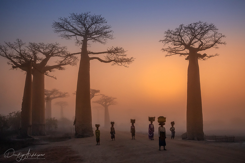 Фототур на Мадагаскар 2020