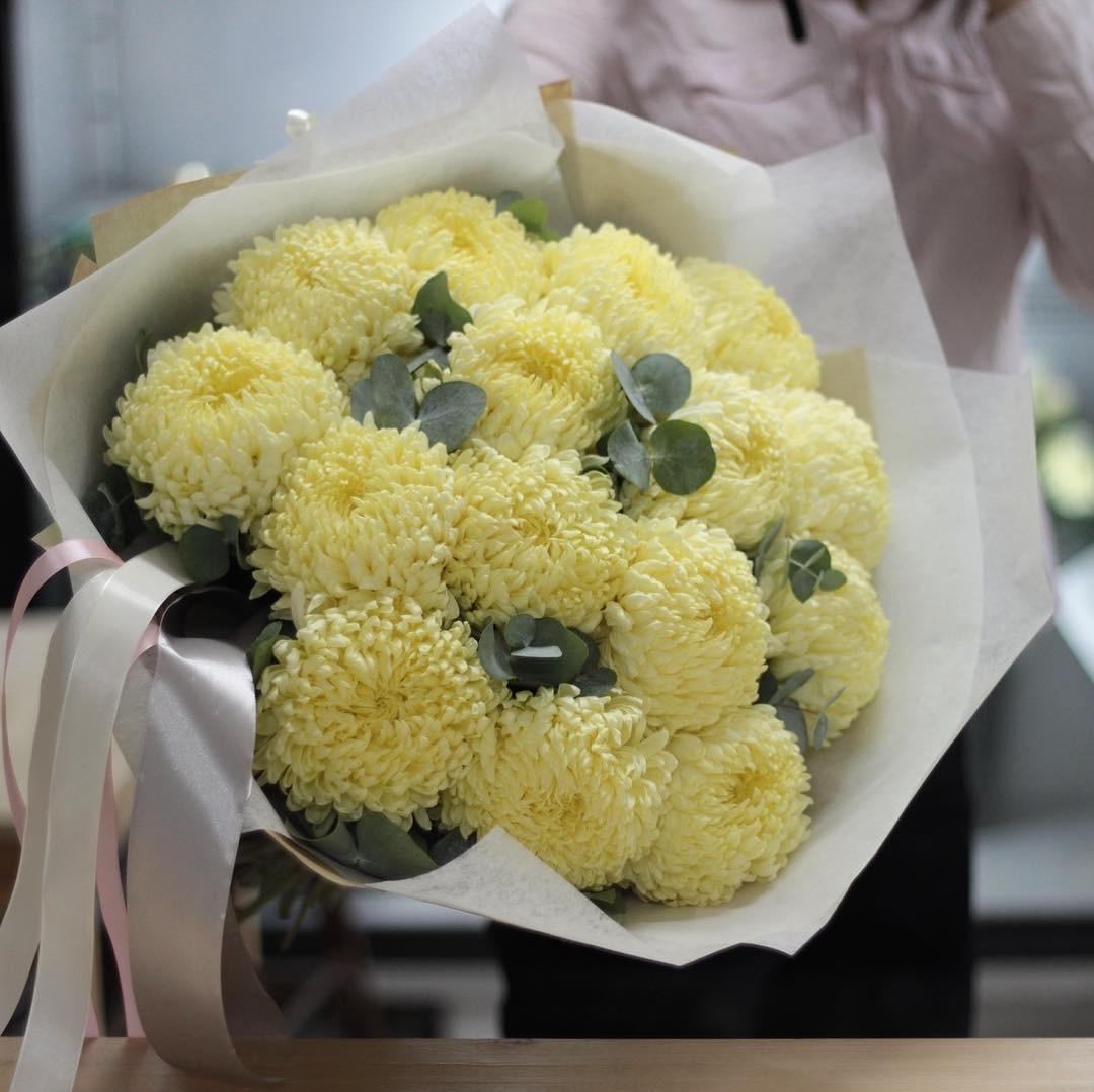 вылазка фото букеты из крупной хризантемы зимой именно