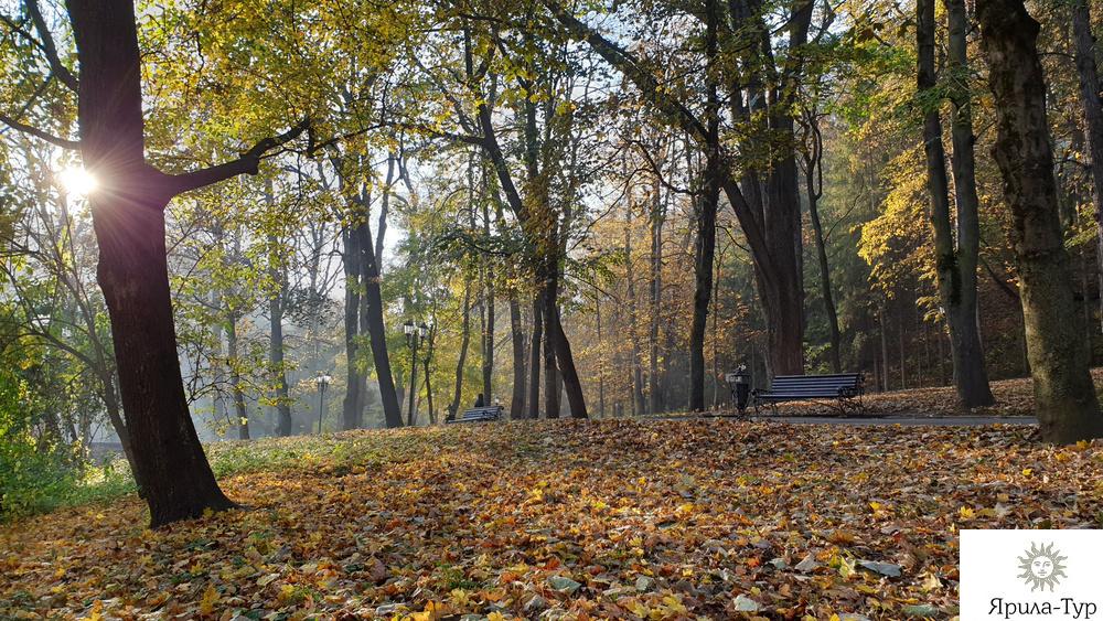 Раннее утро в курортном парке
