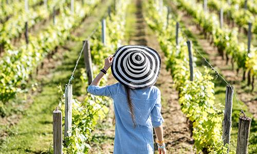 Счастливая посетительница виноградника в Бордо