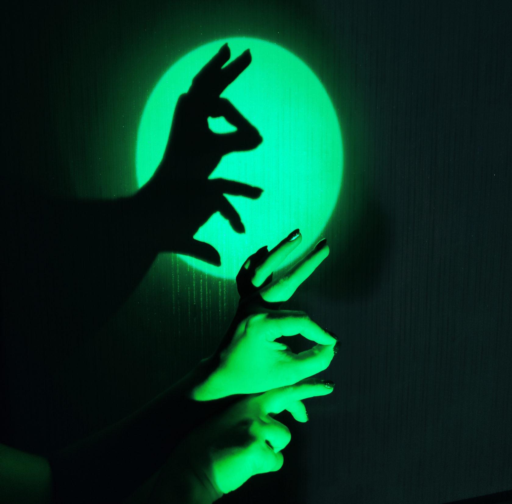 Фото животных руками тени
