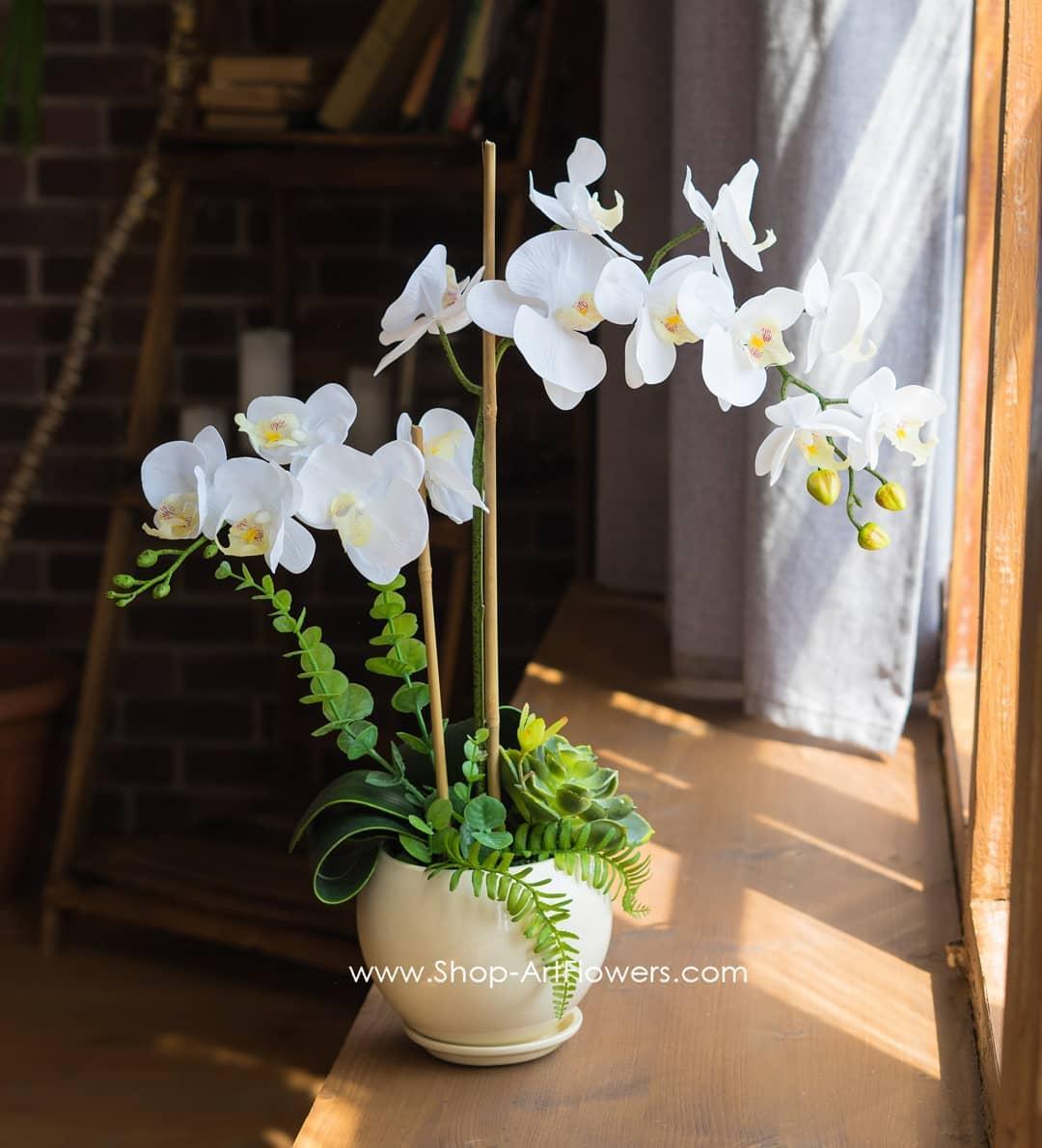 Композиция с белой орхидеей фаленопсис