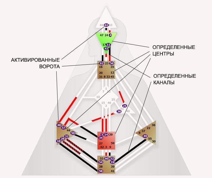 Дизайн Человека определённые центры