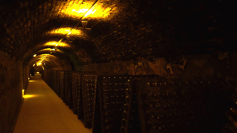 Roederer's labyrinthine cellars are kept extremely dark and house more than 20 million bottles of Champagne