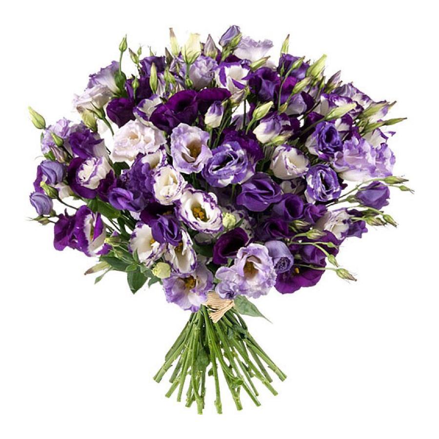 Букет цветов фиолетовый, москва купить