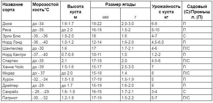 Сравнительная таблица ранних сортов голубики