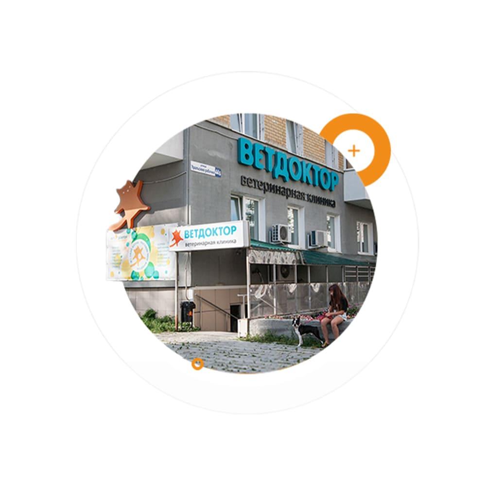 Ветеринарная клиника в Екатеринбурге. Ветдоктор на Уральской 76 Пионерский. Круглосуточная ветклиника
