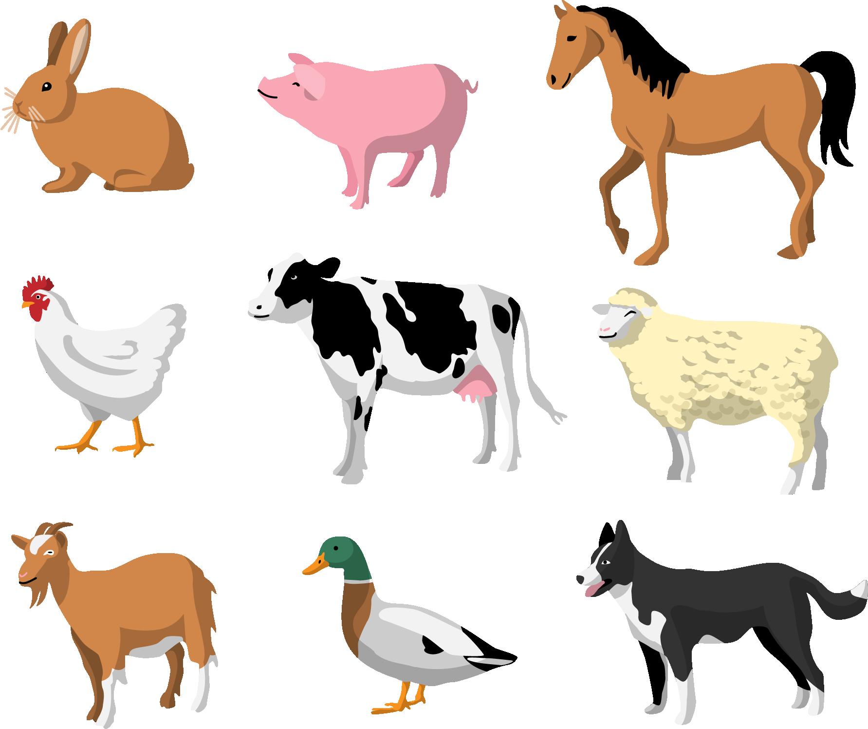 картинки домашних животных для малышей распечатать