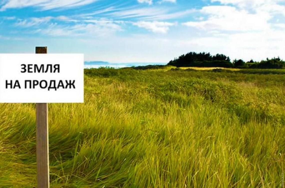 Как подготовиться к продаже пая: инструкция для землевладельцев