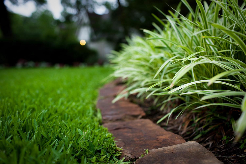 Особенности ухода за участком под загородным домом — Дом и Сад