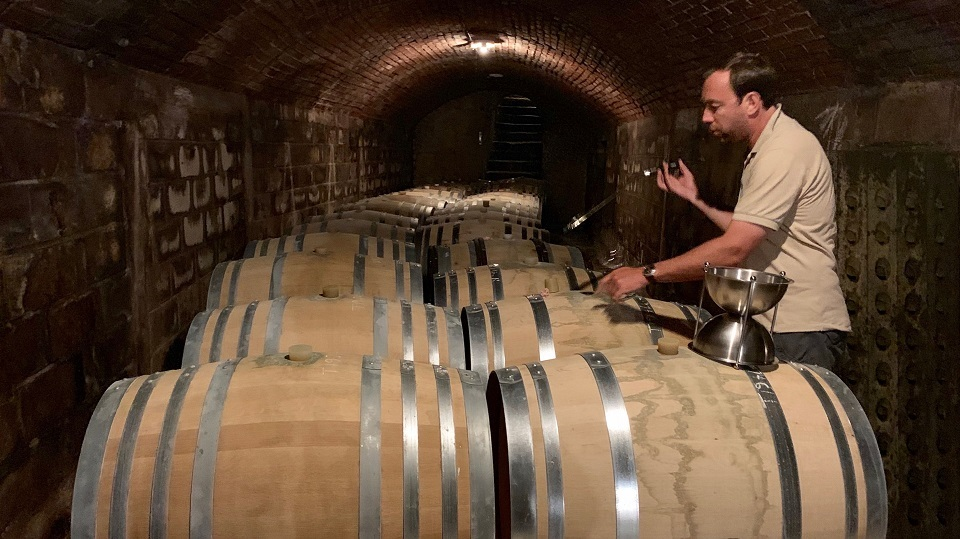 A moment of calm in the cave as Olivier Collin shows me his 2018s from barrel.