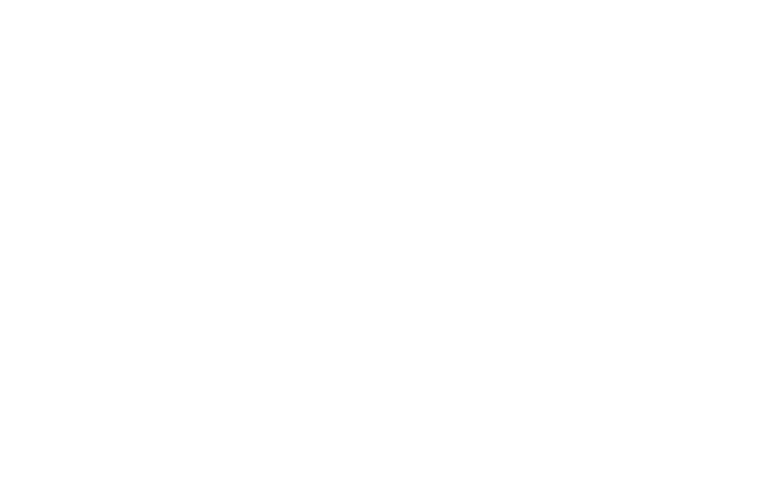 L'S'I consulting