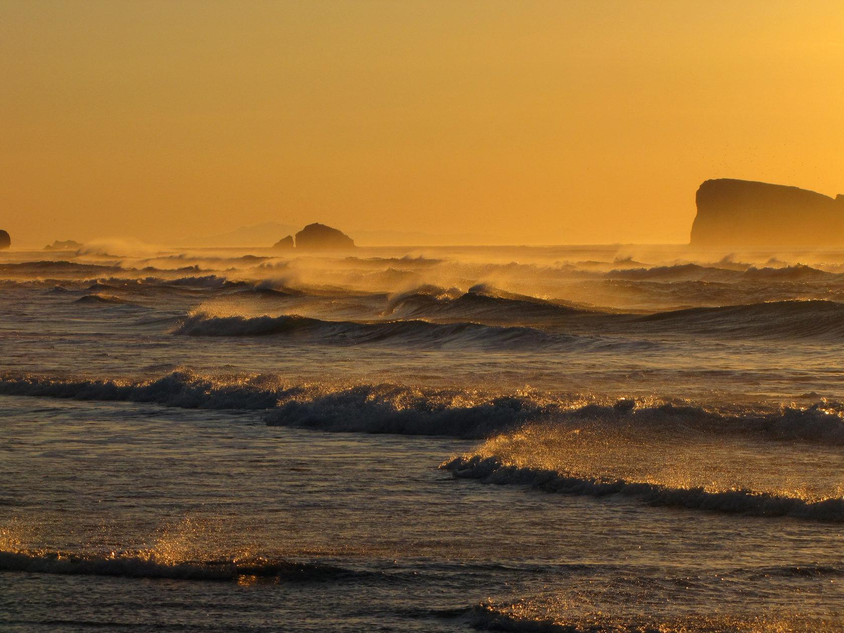 Апельсиновое утро на побережье Тихого океана
